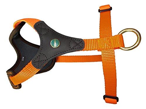 Niggeloh Follow Start, Braun/Orange, Größe S/M, 1517 00008 Hundeführgeschirr