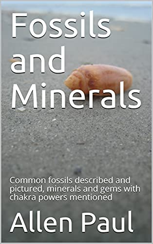 Fossils and Minerals: Common fossils described and pictured, minerals and gems with chakra powers mentioned (English Edition)