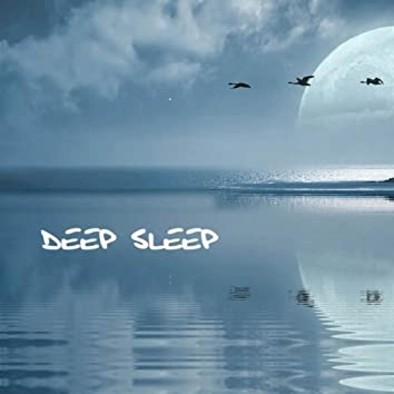 Deep Sleep: Deep Sleep Music Therapy, Relaxing Sounds and Long Sleeping Songs to Help you Relax at Night, Slow Healing Music for Quietness, Meditation, Massage Therapy and Yoga, New Age Spirituality Sleep Songs and Lullabies for Wellness and Better Sleep