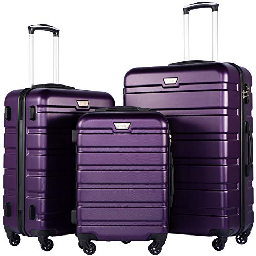 Coolife Luggage 3 Piece Set Suitcase Spinner Hardshell Lightweight TSA Lock (purple2)