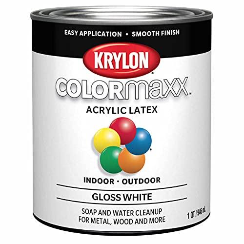 Krylon K05625007 COLORmaxx Brush On Paint, 32 Fl Oz (Pack of 1), White