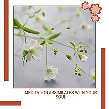 Meditation Assimilates With Your Soul