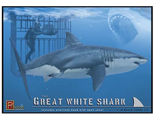 shark model - 5