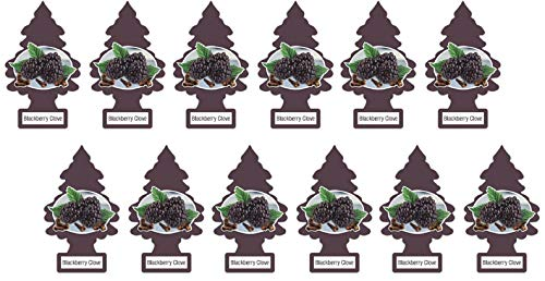 LITTLE TREES Car Air Freshener | Hanging Paper Tree for Home or Car | Blackberry Clove | 12 Pack