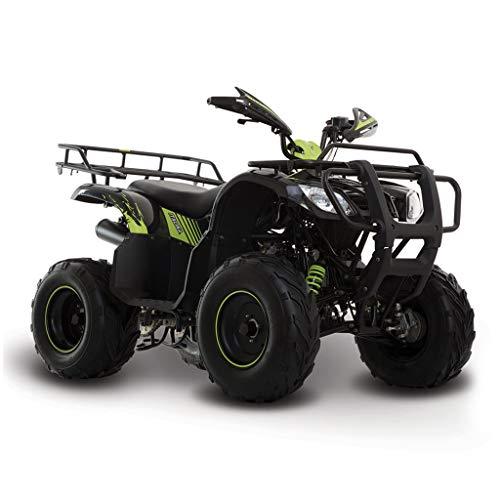 Motocicleta Italika de Cuatrimoto- Modelo ATV 150 Negro Verde