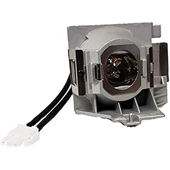 LBTbate 5J.JEE05.001 Projector Bare Bulb for Benq HT2050 HT3050 HT2150ST HT4050 DW843UST DX842UST MW831UST MW843UST MX842UST Lamp Bulb Replacement