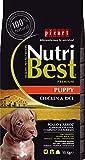 Nutribest Dog Puppy 15 Kg. 15000 g