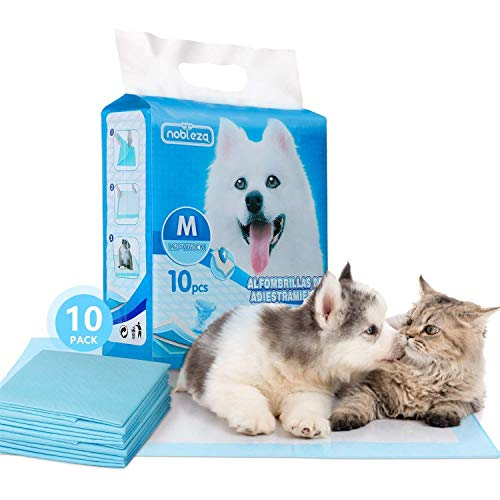 Nobleza - 100 x Empapadores Perros Alfombrilla higiénica de Entrenamiento para Perros. Ultraabsorbente 60cm*60cm. ✅