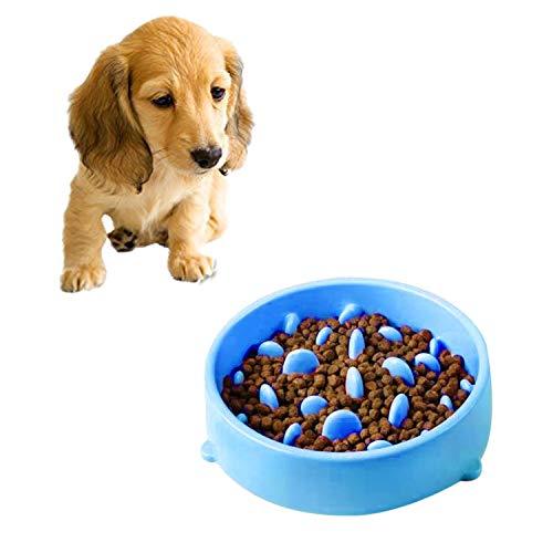 WXX Pet Bowl Verhindert das Ersticken PP Materia Bowl