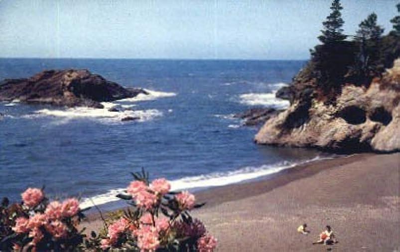 Misc, Oregon Postcard fizpitoc278818