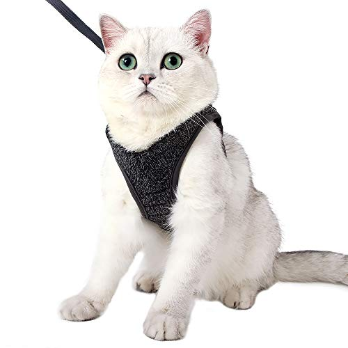 EVEL Katzengeschirr und Leine Ultraleicht für Fluchtschutz Verstellbarer weicher Netzschritt in gepolsterter Polsterung Laufweste Jacke für Kätzchen Haustiere Welpe