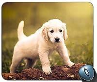 面白いラブラドル?レトリーバー犬、マウスパッド(犬のマウスパッド)