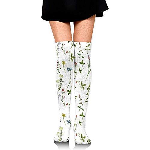 Web-ster-Socks Kniehoge slangkousen voor meisjes, vrouwen zoete aquarel kruiden afdrukken boven de dijen hoge lange kousen