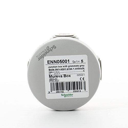 Schneider ENN05001 Scatola di Derivazione Ip55, Bianco, 60x40