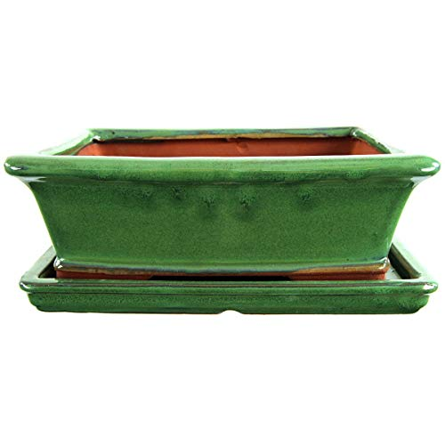 Bonsaischale mit Untersetzer 25.5x21x8.5cm Grün Rechteckig Glasiert