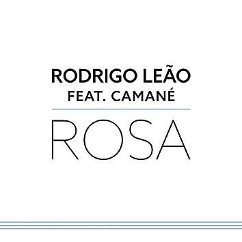Rosa (Camané)