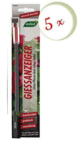 Sparset: 5 x WESTLAND® Gießanzeiger für Blumenerde, 26 cm anthrazit