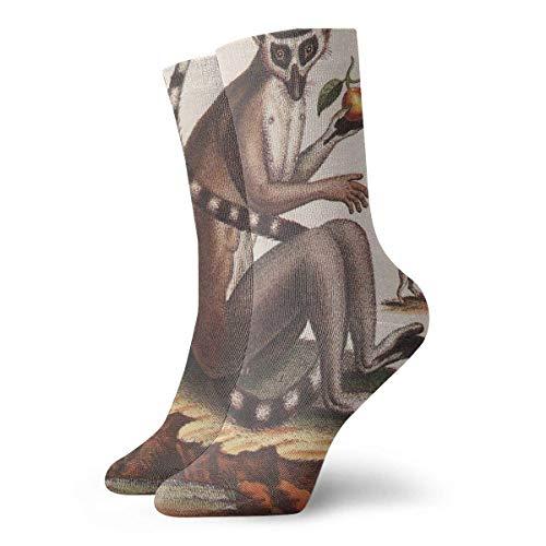 Drempad Luxury Sportsocken Unisex Tube Socks Crew Lemur Over Calf Comfort Stockings For Sport Travel