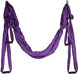 NiceDD Violet Aerial Yoga Swing - Ultra Strong Antigravity Yoga Hammock/Sling/Inversion Tool for Air Yoga Inversion Exercises