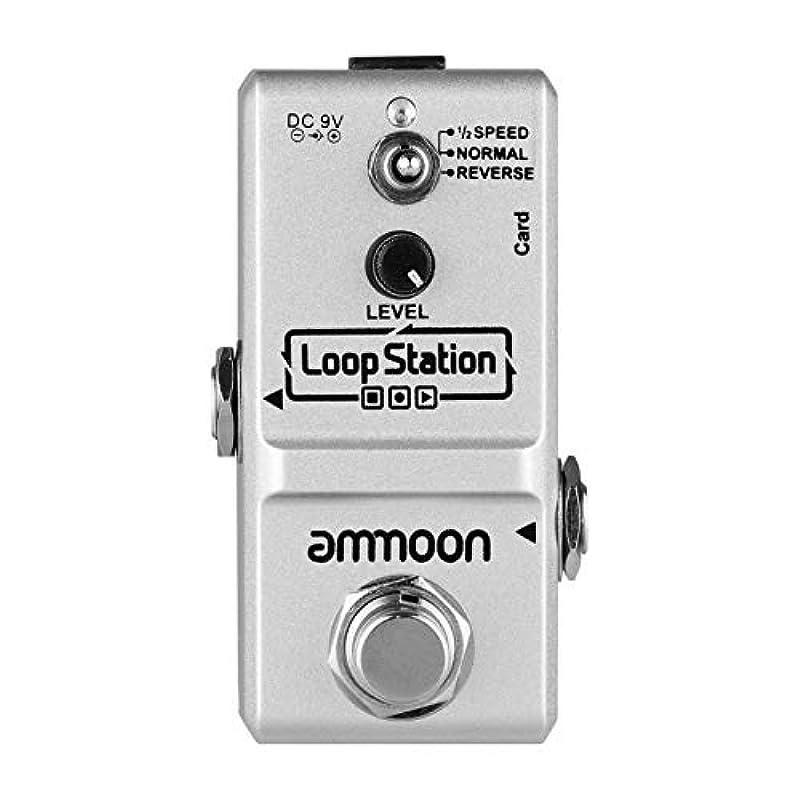ammoon Looper 루퍼 이펙터 페달 트루 바이 패스