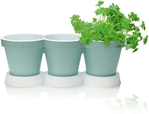 com-four® 3er Kräutertopf mit Untersetzer - Pflanzentopf für Blumen und Kräuter - Deko Blumentopf für Garten, Balkon und Wohnung (Kräutertopf - türkis)