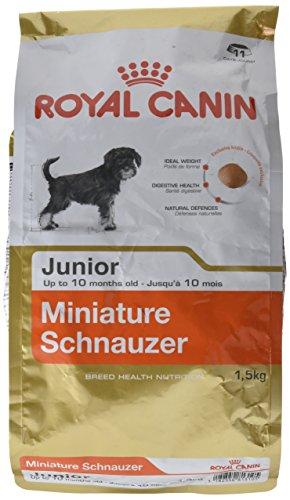 Royal Canin Comida para perros Schnauzer Mini Junior 1.5 Kg