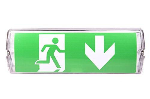 IP 65 LED Dauerlicht Notleuchte Notbeleuchtung Notausgang Fluchtwegleuchte Notlicht Fluchtweg EXIT (Dauerlicht IP65)