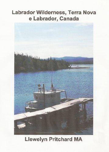 Labrador Wilderness, Terra Nova e Labrador, Canada (Atualize seu corpo, mente e...