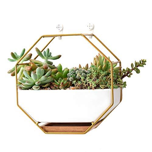 TENLOY Geometrische Opknoping Muur Planter, 6.89 inch Moderne Wandmontage Vazen/Container Vrijstaande Bureau Succulente Plant Houder/Cactus bloem Pot voor Luchtplanten/Succulente Planten/Kunstbloemen
