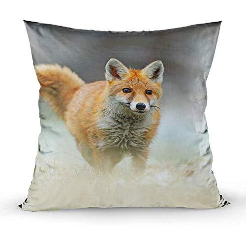 Sonder-Shop Kissenbezüge, Kissenbezug Couch Red Fox Jumping Wildlife Scene Aus Europa Fur Coat Animal In Der Natur Habitat