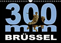 300mm - Bruessel (Wandkalender 2022 DIN A4 quer): Bruessel durch das 300mm Tele-Objektiv gesehen (Monatskalender, 14 Seiten )