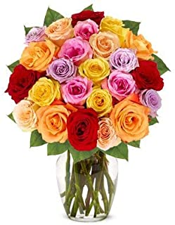 Flowers - Two Dozen Rainbow Roses (Free Vase Included)