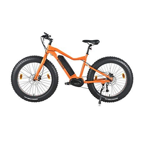 Mountain fat-bike E-Mootika con pedalata assistita e batteria Panasonic Multicolore