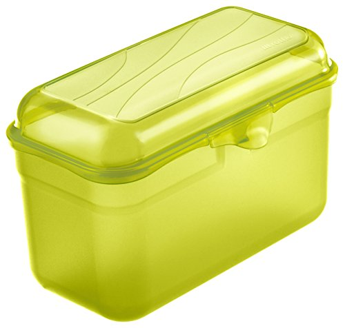 Rotho Funbox Vesperdose 1.75 l, Kunststoff (BPA-frei), grün, 1.75 Liter (19,5 x 10,5 x 12,5 cm)