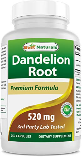 Best Naturals Dandelion Root 520 mg 250 Capsules