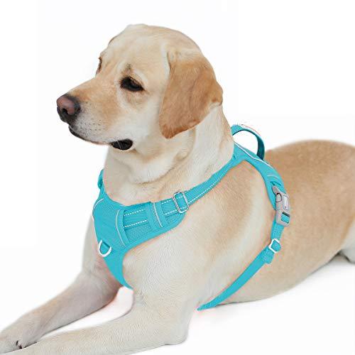 BARKBAY Hundegeschirr mit Clip vorne, strapazierfähig, reflektierend, leicht zu kontrollieren, Griff für große Hunde, mit ID-Tagentasche (blau, L)