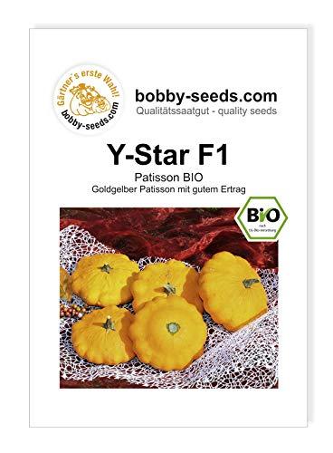 Y-Star F1 BIO Kürbissamen von Bobby-Seeds Portion