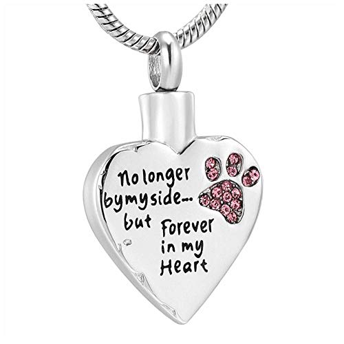 Wxcvz Cremation Jewelry No Longer By My Side,But Forever In My Heart Cremation Urn Necklace For Pet Dog Cats,Pet Memorial Urn Necklace