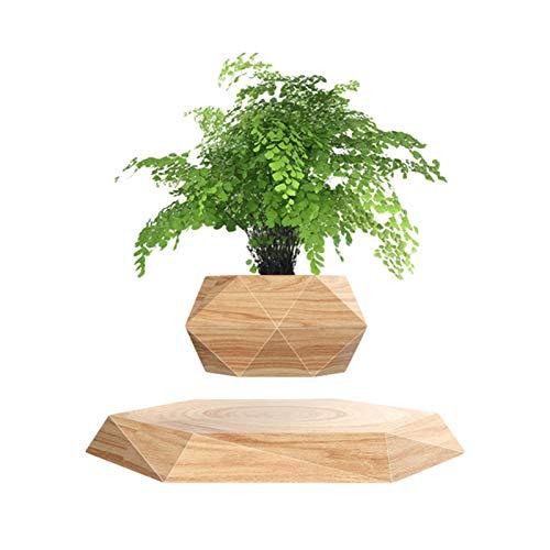 Horypt Maceta de bonsái de Aire levitante, macetero de rotación, Maceta de levitación magnética con suspensión, Maceta Flotante para el hogar, Oficina, decoración de Escritorio, macetas y jardineras