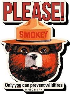 Magnet - Smokey Bear - Funky Chunky New 95647
