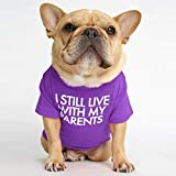 Dog Shirt Pet Clothe Big Size for French Bulldog Dog Cat Breathable Dog T-Shirt Pet Costume S M L XL XXL New 2021 (X-Large, Purple)