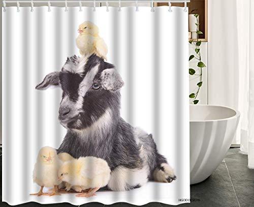 YEDL Tier Duschvorhang, Nutztiere Niedliche Neugeborene Ziege & Hühner Wasserdichter Polyester Bad Duschvorhang 180 × 180 cm