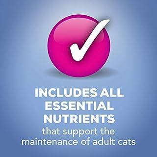 ارخص مكان يبيع Purina Friskies` Adult Wet Cat Food Variety Pack