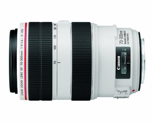 Canon EF 70-300mm f/4-5.6L IS USM UD Telephoto...