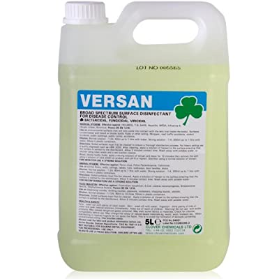 Versan HIV MRSA Hepatitis Disinfectant (5L) - Comes With TCH Anti-Bacterial Pen! by Clover