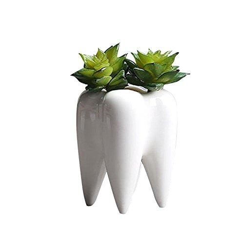 Blumentopf, weiß, Keramik, Zahnform, innovativer Mini-Pflanztopf für Sukkulenten und andere Pflanzen, modernes Design, Deko für den Innenbereich, ohne Pflanzen