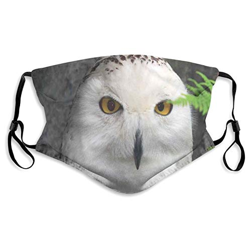 Masque coupe-vent au charbon actif avec motif hibou blanc, feuilles vertes, yeux ambrés, sorcellerie imprimés, décorations pour adultes