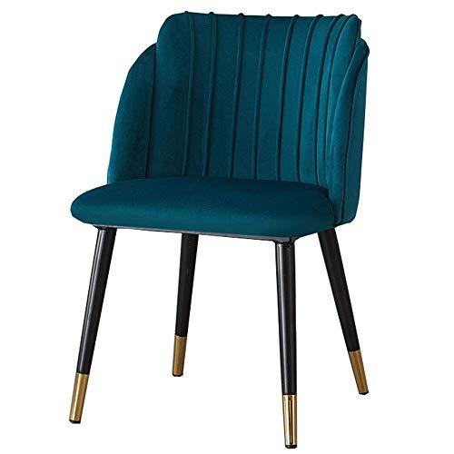 Bureaustoel, modern design, eetkamerstoel, eetkamerstoel, restaurant, zitkussen van fluweel van metaal, gewicht lager 150 kg, voor tuinstoel of zitgelegenheden, ideaal (roze) Blauw