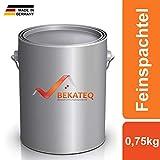 BEKATEQ BK-110EP Feinspachtel Epoxidharz 0