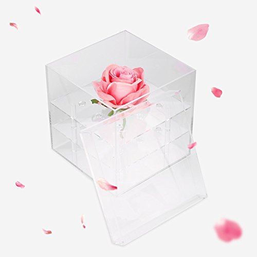 1 hole/ 9 holes Cosmetics, Jewelry Boxes & Organizers Boxes Box Rose Keep Box Water Jet For Flowers Organizer Make Up Storage Case Casket for Cosmetics Beads Rings Earrings Tool Containers